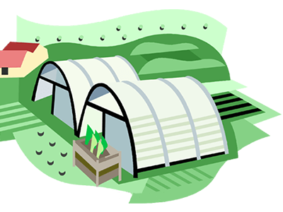 بهبود-عملکرد-گلخانه-ها-و-کسب-و-کار-صاحبان-آنها